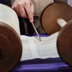 Torah-pointer